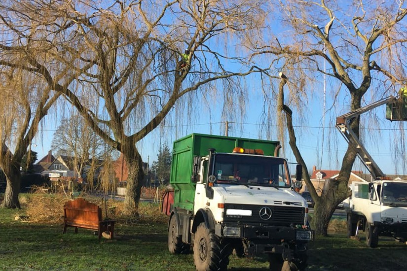 Tree Surgeons Forestry Lincolnshire